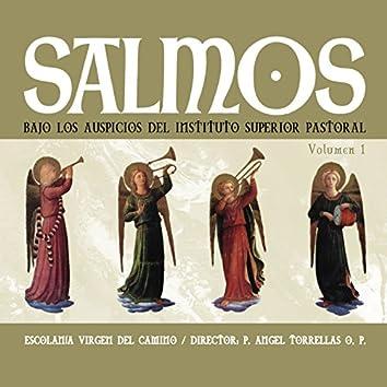 Salmos, Vol. 1