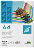 Liderpapel PC52 - Papel color, A4 80G/M2 10 colores surdidos, Paquete de 100