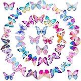 SIQUK 40 piezas de pinzas de mariposa pinzas de pelo de mari