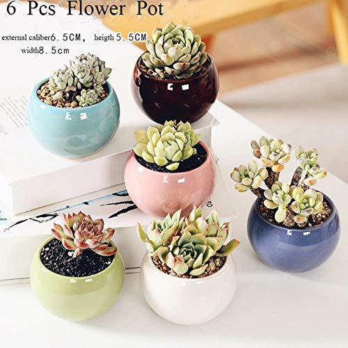 Bloempotten, vetplantenpotten, tuinpotten, keramische bloempotten, tuindecoratie buitenshuis, 6 stuks, medium
