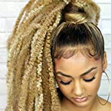 Marley Hair Twist Braiding Hair 18 Inch 1 Pack Long Afro kinky Twist Crochet Hair Marley Twist for Butterfly Locs Crochet Hair(27#)