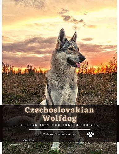 Czechoslovakian Wolfdog: Choose best dog breeds for you (English Edition)