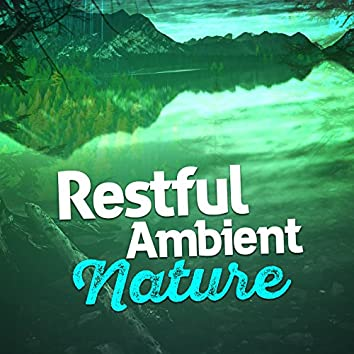 Restful Ambient Nature