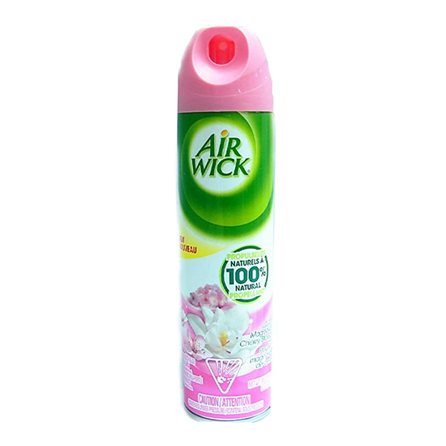 ヘクタールキルト木製Air Wick Air Freshener 4?in 1?Magnolia and Cherry Blossom (226g) 8778976