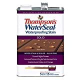 THOMPSONS WATERSEAL TH.043841-16 Solid Waterproofing Stain, Acorn Brown