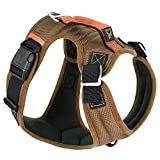 Gooby - Pioneer Dog Harness, Small Dog Head-in Harness with Control Handle and Seat Belt Restrain Captability, Sand, X-Large
