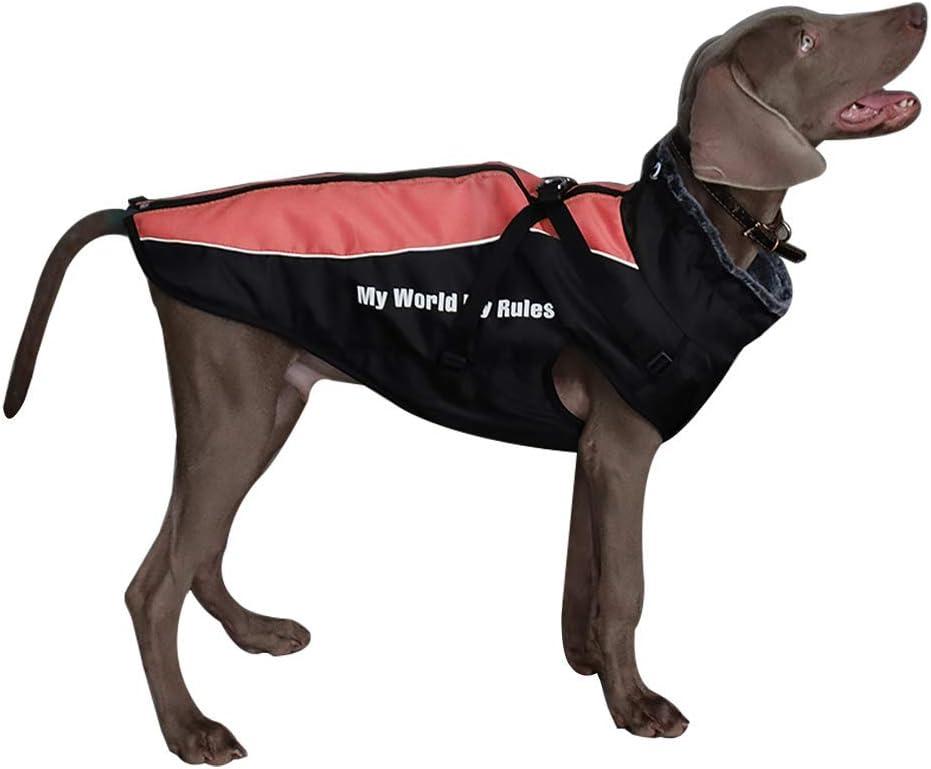 Chaqueta con correa incorporado , para el frío, impermeable, reversible, ajustable, transpirable – todos los tamaños de perro