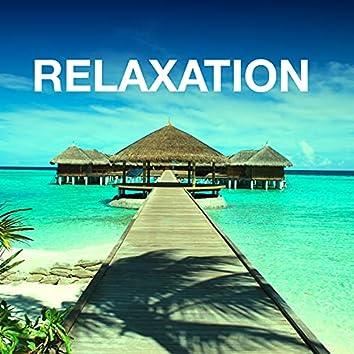 Relaxation – Musique Paisible pour Guérir l'Anxiété, Combattre le Stress, Bien Dormir avec Sommeil Profond