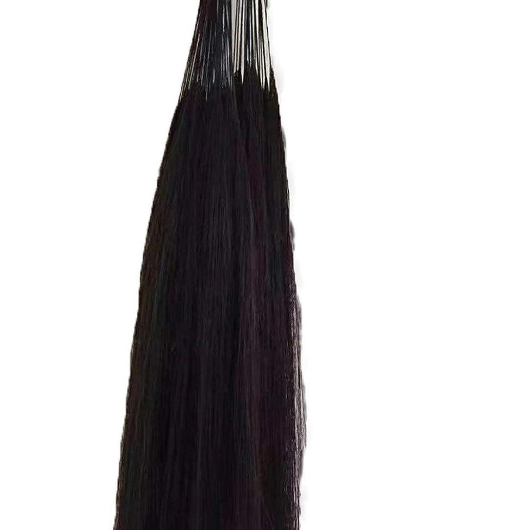 純粋ななのでベーコンJULYTER 羽毛エクステンション人間の毛先のヒントフュージョンアンボー手編み未縫合ヘアーエクステンション (色 : 黒, サイズ : 60cm)