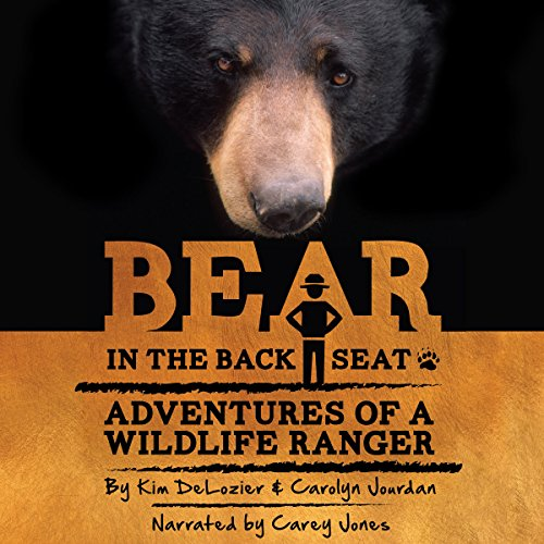 Bear in the Back Seat  By  cover art