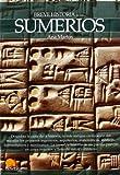 Breve historia de los sumerios