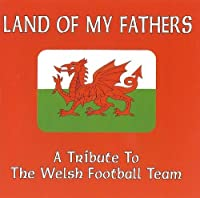 Land of My Fathers: A Tribute to the Welsh Football Team