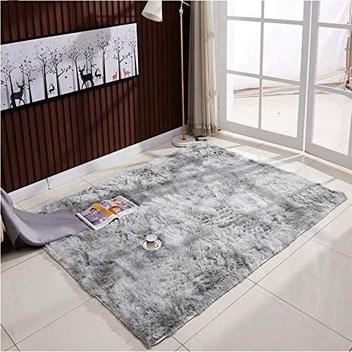 ZHOUZEKAI Moqueta Rectangular Alfombra Antideslizante para el hogar, Adecuado para la decoración de Salas de Estar y dormitorios,alfombras Decorativas (Gris Claro, 120_x_160_cm)