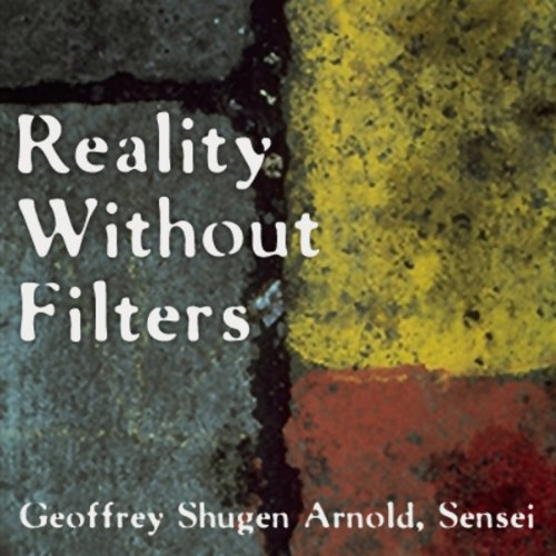 Reality Without Filters audiobook cover art