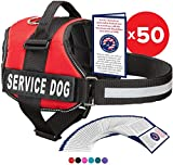 Service Dog Vest With Hook and Loop Straps and Handle - Harness is Available in 8 Sizes From XXXS to XXL - Service Dog Harness Features Reflective Patch and Comfortable Mesh Design (Red, XS)