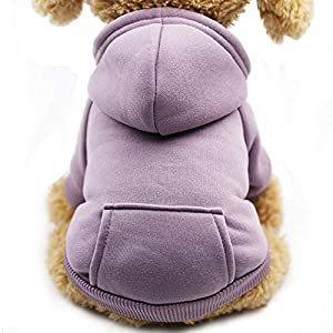 Fashion Focus On New Winter Dog Hoodie Sweaters with Pockets Warm Dog Clothes for Small Dogs Chihuahua Coat Clothing Puppy cat Custume (Purple, Small)