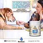 Best Paw Nutrition - Glucosamine pour Chiens et Chats - Soutien articulaire et complément Alimentaire pour Chiens et Chats - 300 Tablets #3
