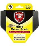 PROTECT HOME Mäuse Köderbox für Mäusegift, sichere Ausbringung von Mäuseködern, schwarz