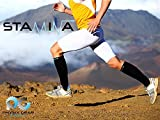 Zoom IMG-1 physix gear sport calze compressione
