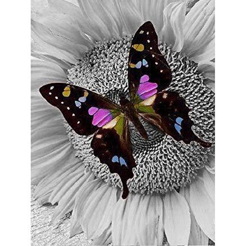 Pintura De Diamantes Para Adultos Negro 5D Diy Cuadro De Diamante Cuadrado Completo Animal Mariposa Mosaico Diamante Bordado Decoración Hogar Imagen Hecha A Mano 20X25Cm