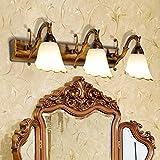 Unbekannt FEI Spiegel-Licht-europäische Spiegel-Frontlichter führten Badezimmer-Lichter Badezimmer-amerikanisches Spiegel-Kabinett beleuchtet Kommode-Make-upbeleuchtungs-Lampe