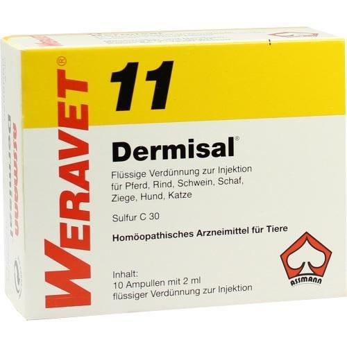 DERMISAL 11 Ampullen vet. 10X2 ml