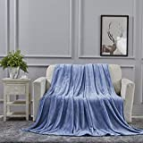 All American Collection Super Soft Ultra Comfort Plush Microfiber Throw Blanket for Couch Home Bedroom Living Room (50 x 60, Solid Light Blue)