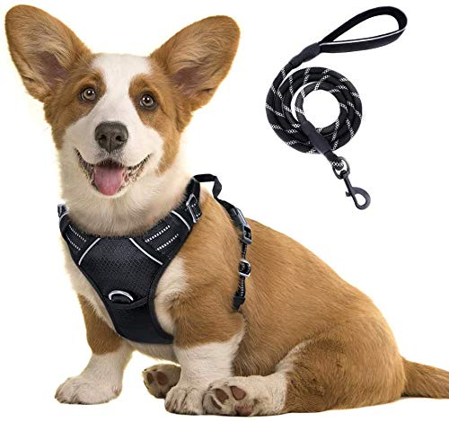 rabbitgoo No-Pull Dog Harness Leash Set Heavy Duty Halter Harness with Leash for Large Dogs Reflective Adjustable Pet Vest Harness Outdoor Training Leash, Medium, Black