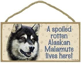SJT ENTERPRISES, INC. A Spoiled Rotten Alaskan Malamute Lives here Wood Sign Plaque 5