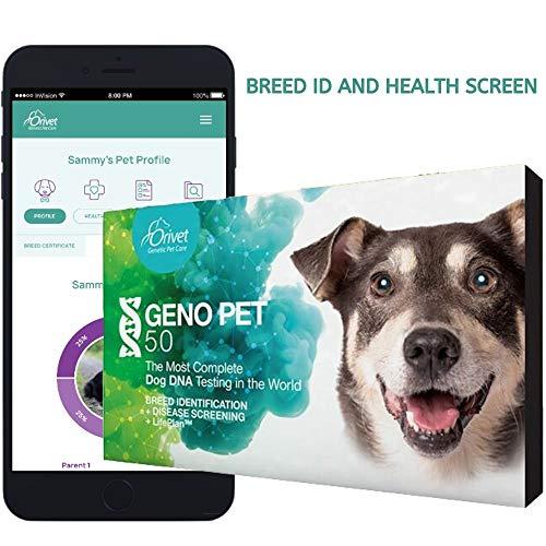 ORIVET Dog DNA Test | Comprehensive Dog Breed Test Kit, Genetic Testing, Health Risks Screen and Life Plan GenoPet 5.0 for Canines