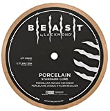 Lackmond - BPS10 Beast Pro Porcelain Standard Core Tile Saw Blade - 10' Wet Ceramic Tile Cutting Tool with Thin Kerf Core & 5/8' Arbor - BPS7
