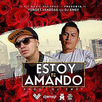 Te Estoy Amando (feat. Dj Emsy)