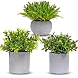 MAKEATREE 3 Packs Small Fake Potted Plants, Faux Eucalyptus Artificial Plants Plastic Greenery for Table Shelf Home Office Bathroom Farmhouse House Indoor Decorations