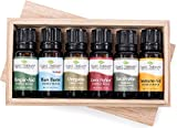 Plant Therapy Wellness Essential Oil Gift Set. Includes: Germ Fighter, Immune-Aid, Respir-Aid, Blues...