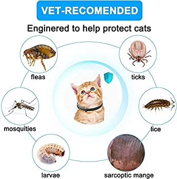 Collier anti-puces et anti-tiques pour chat, 8 mois de protection efficace, étanche, collier anti-puces, longueur réglable 38,1 cm, convient pour chats et petits animaux de compagnie (lot de 2)
