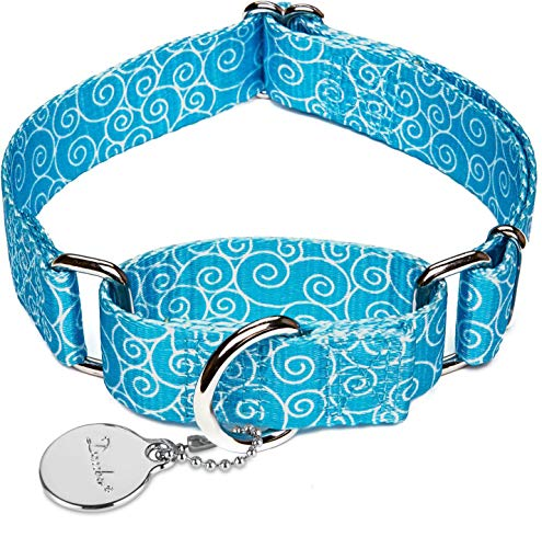 Dazzber Martingale Collars for Dogs, Sky Blue, Medium, Neck 14 Inch - 21 Inch, No Pull Anti-Escape Dog Collar for Walking Training