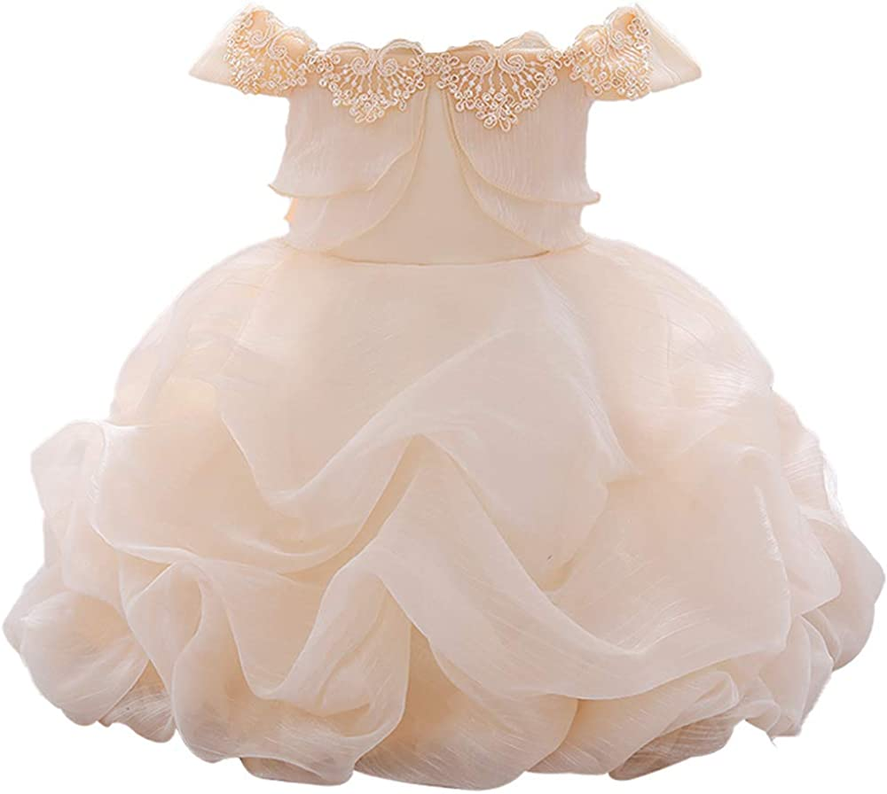 WZSYGDTC Toddler Baby Girls Flower Dress Off-Shoulder Pageant Dresses Princess Tutu Dresses