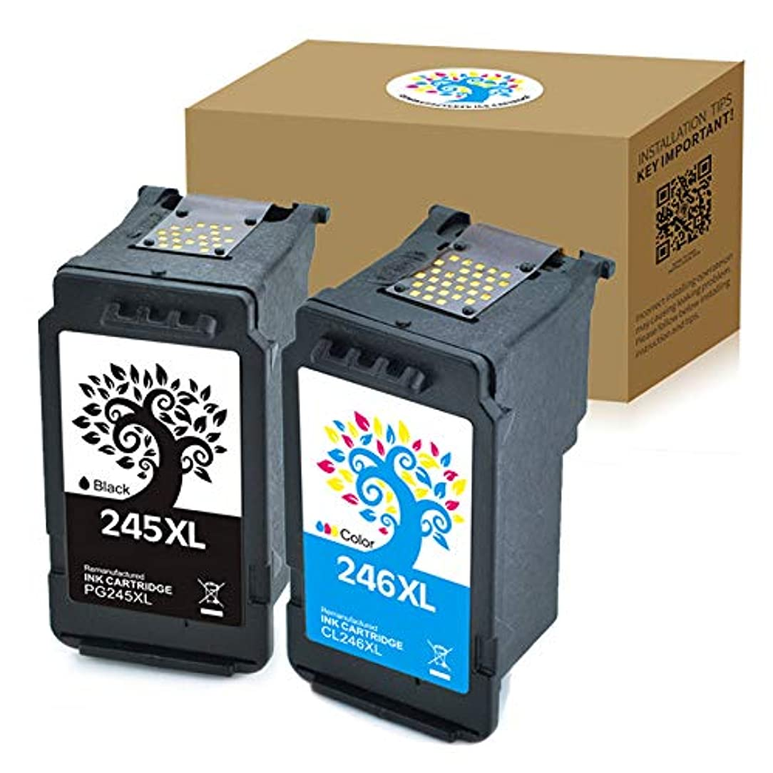H&BO for Canon PG245XL CL246XL Remanufactured Ink Cartridges High Yield for Canon PIXMA MG2920 MG2922 MG2924 MG2420 MG2522 MG2520 MG2525 MX490 MX492 IP2820 MG3022 MG3020 MG2555 (1 Black +1 Tri-Color)