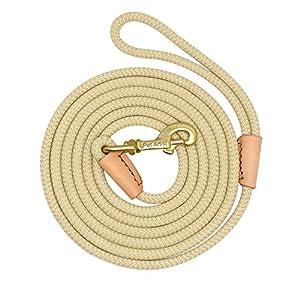 Pet Artist Laisse de dressage robuste en nylon tressé, pour chiens de petite, moyenne ou grande tailles, 10m, 20m, 5m, 3m de long