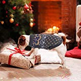 Zoom IMG-1 idepet pet cane maglione inverno