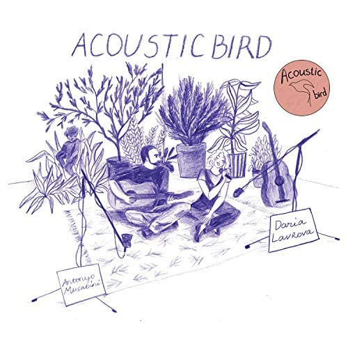 Acoustic Bird