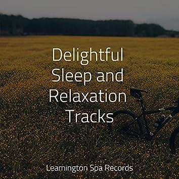 Delightful Sleep and Relaxation Tracks