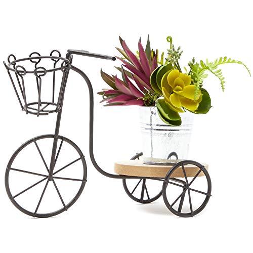 Soporte para macetas, estructura de hierro en miniatura para plantas, con forma de triciclo, decoración de jardín, para interior, de 20 x 15 x 9,5 cm