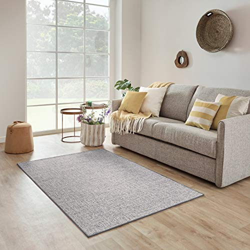 Carpet Studio Selina Alfombra Salón 115x170cm, Alfombras para Sala, Comedór & Dormitorio, Fácil de Limpiar, Superficie Suave, Pelo Corto - Gris