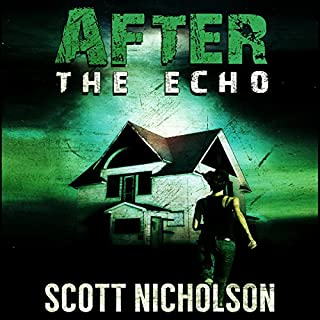After: The Echo audiobook cover art