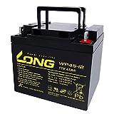 AGM WP45-12 - Batería de Plomo (12 V, 45 Ah, Compatible con MP45-12, NP38-12I, 38 Ah, 39 Ah, 40 Ah, 42 Ah, 44 Ah, 50 Ah)
