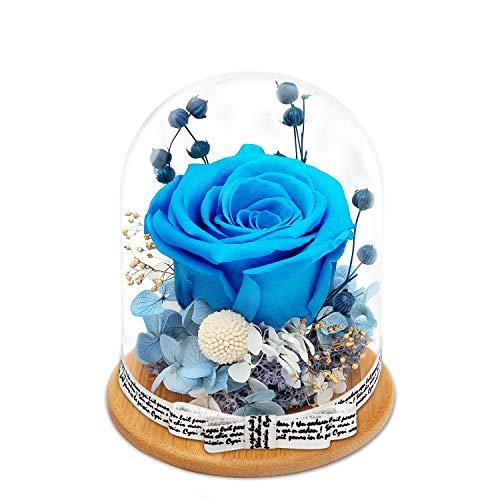 King Doo - Rosas artificiales para el día de San Valentín, cumpleaños, aniversario, Navidad (azul océano)