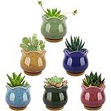 Lewondr Succulent Plant Pots, 3.5 Inch 6 Pack Ice Crack Mini Ceramic Flower...