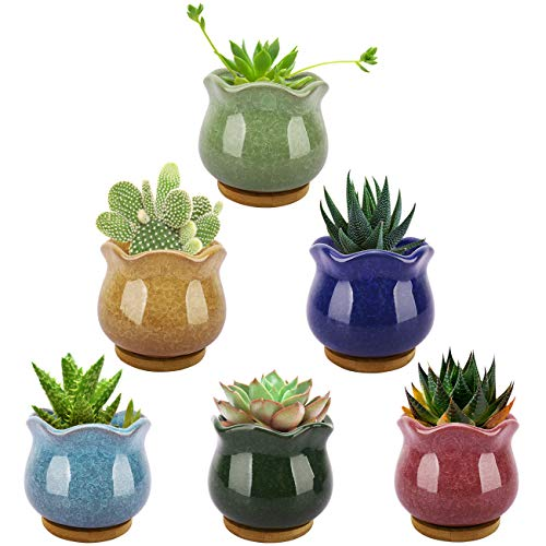 Lewondr Succulent Plant Pots, 3.5 Inch 6 Pack Ice Crack Mini Ceramic Flower Cacti Pot Planter Container Set with Drain Hole & Bamboo Trays for Garden Home Office Tablet Desk Ideal Gifts, Colorful