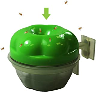 GREENSTRIKE REUSABLE FRUIT FLY TRAP WITH HOLDER,Green & Clear - 10048